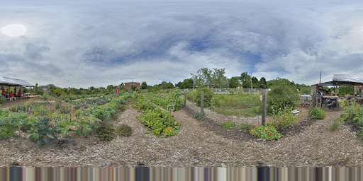 PACT David Wilson Memorial Garden | Toronto Google Business View