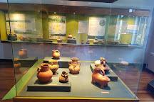 Museo de la Exploracion Rudolph Amandus Philippi, Valdivia, Chile