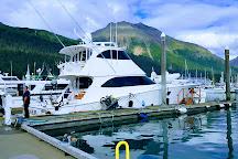 Kenai Fjords Tours, Seward, United States