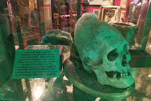 Wolf's Museum of Mystery, St. Augustine, United States