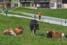 Fromagerie d'Alpage de Moleson, Moleson, Switzerland