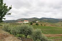 Vinicola Wine & Soul, Pinhao, Portugal