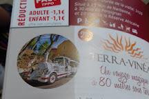 Terra Vinea, Portel-des-Corbieres, France
