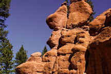 Red Rocks Group Campground, Woodland Park, United States