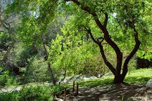 University of California, Los Angeles (UCLA), Los Angeles, United States