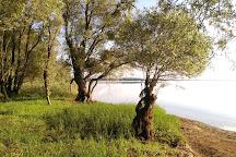 Lac d'Orient, Geraudot, France