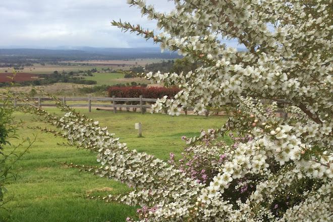 Crane Wines, Kingaroy, Australia