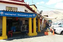 Mercado Central de Iquique. Centenario., Iquique, Chile