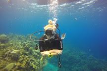 Pro Dive Roatan, West End, Honduras