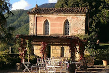 Tenuta di Valgiano, Lucca, Italy