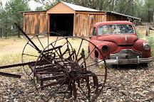 Bob's Shed, Quirindi, Australia