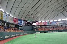 Tokyo Dome, Bunkyo, Japan