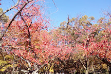 Nishimuko Park, Amagasaki, Japan