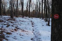 Stissing Mountain Multiple Use Area, Pine Plains, United States
