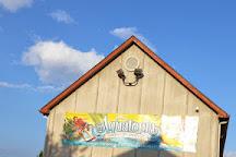 Camelback Mountain Ski Resort, Tannersville, United States