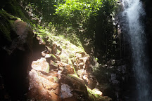Verde Malakita, San Pablo, Costa Rica