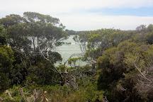Bowman Scenic Drive, Beachport, Australia