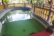 Cherating Turtle Sanctuary, Cherating, Malaysia