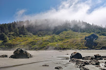 Lone Ranch Beach, Brookings, United States