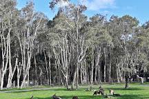 Currumbin Wildlife Sanctuary, Currumbin, Australia