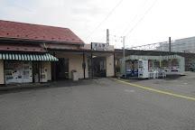 Nagareyama City Museum, Nagareyama, Japan