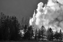 Castle Geyser, Yellowstone National Park, United States