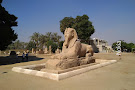 Mit Rahina Museum Colossus of Ramses II