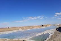 Chott El Jerid, Tozeur, Tunisia