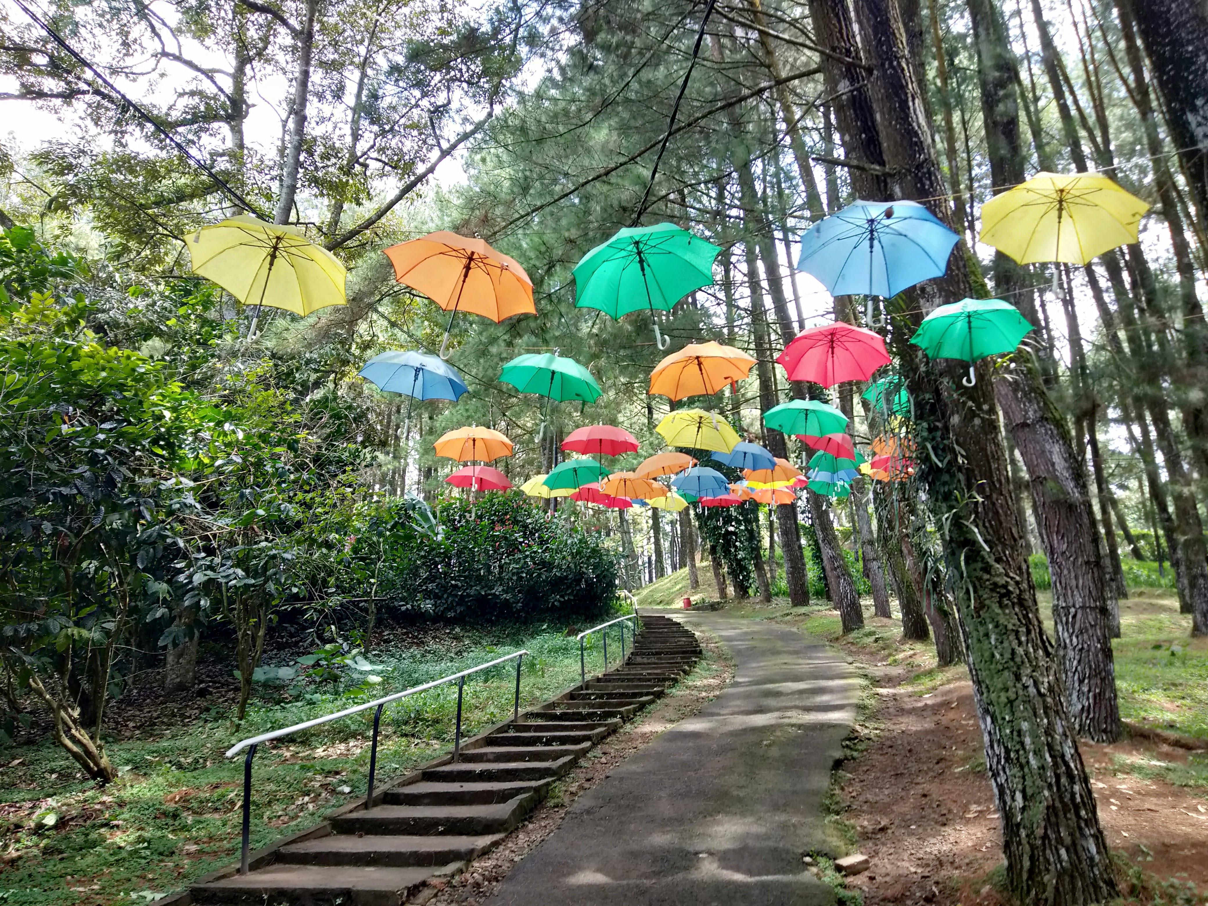 7 Tempat Wisata Di Sukabumi Paling Hits & Instagramable ...