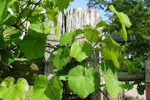 Ozan Winery & Cellars, Calera, United States