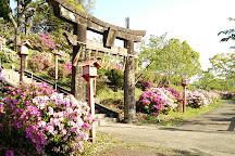 Maruyama Park, Tagawa, Japan