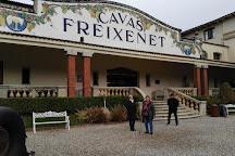 Freixenet, Sant Sadurni d'Anoia, Spain