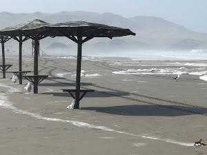 Playa Puerto Nuevo 4