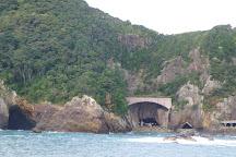 Kinomatsushima Island, Nachikatsura-cho, Japan