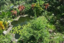 Palm Tree Gardens Botanical Garden, Saint David's, Grenada