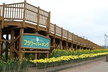 Flower Parking, Makkari-mura, Japan