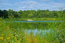 Terry Trueblood Recreational Area, Iowa City, United States