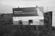 RSPB Mull of Galloway, Mull of Galloway, United Kingdom