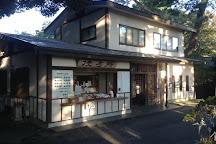 Karasawayama Jinja Shrine, Sano, Japan