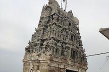 Sri Lakshmi Narsimha Swamy Temple, Vellore, India