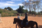 Country Riding Centre