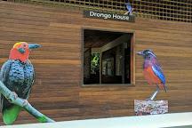 Sandakan Rainforest Discovery Centre (RDC), Sandakan, Malaysia