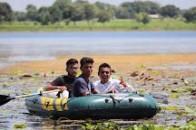 Kanewal lake, Anand, India