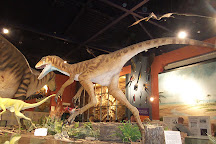 Dinosaur Isle, Sandown, United Kingdom