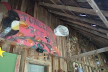 Cooper's Gem Mine, Blountville, United States