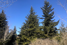 Spruce Knob, Riverton, United States