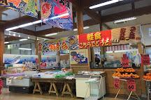 Shimane Osakana Center, Hamada, Japan