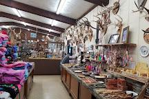 Wisconsin Deer Park, Wisconsin Dells, United States