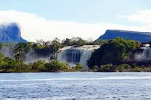 Sapo, Canaima National Park, Venezuela