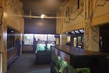 Potter Park Zoo, Lansing, United States